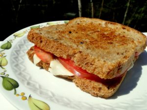 sandwich-49244_1280