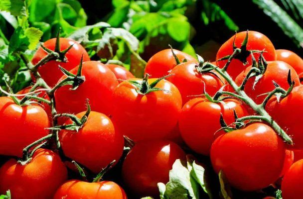 What foods are high in antioxidants tomatoes